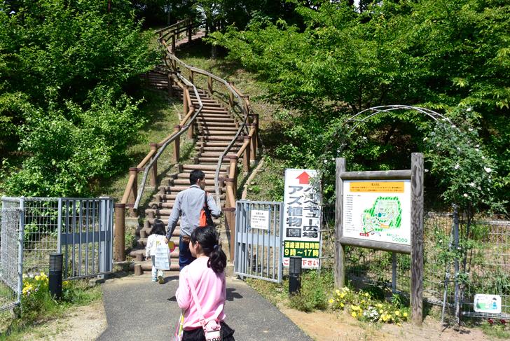 道の駅の裏の階段